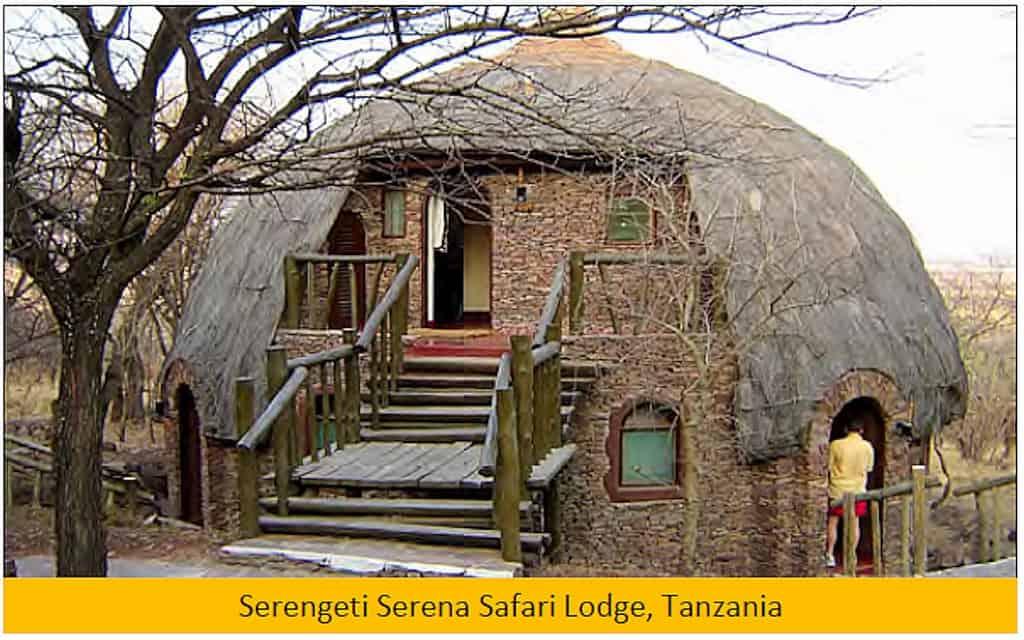 04-03 Serengeti Serena (1024x640)