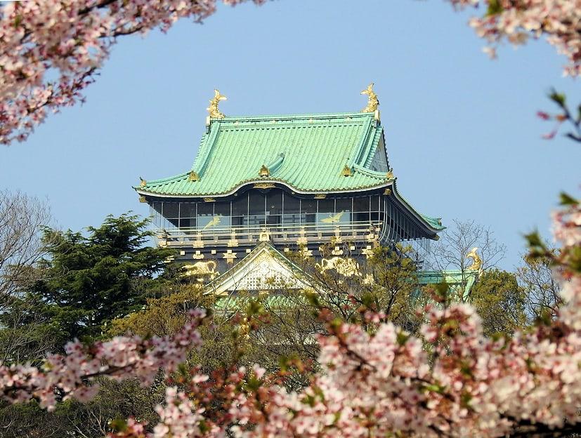 A Wasabi Farm, A Castle & A Ropeway
